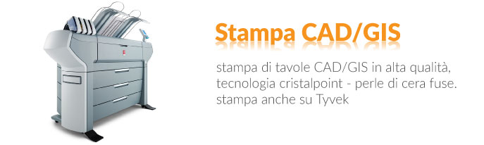 stampa cad gis