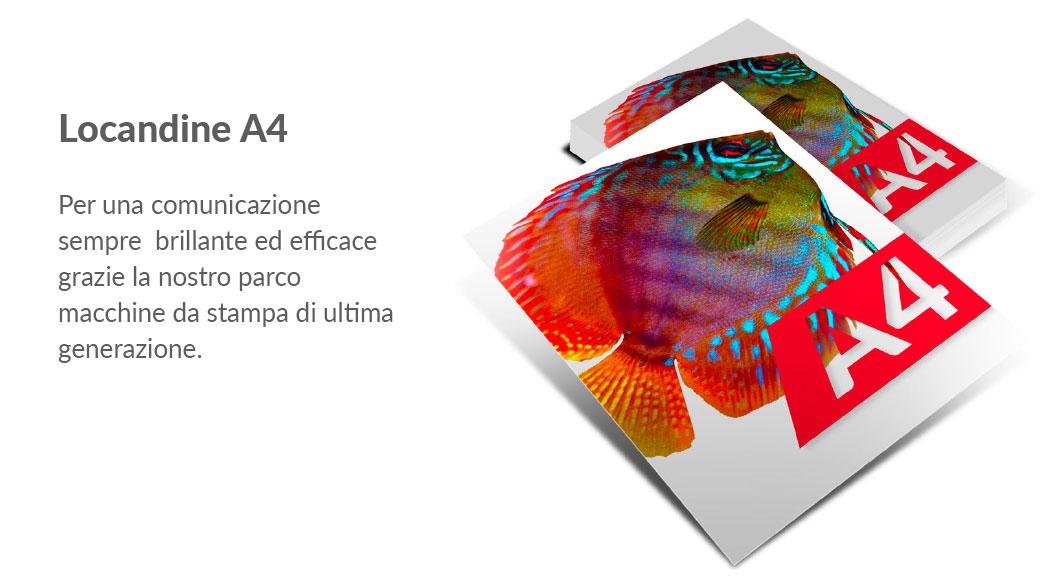 164b91fe5e SPAZIO SERVIZI - centro stampa - Pistoia