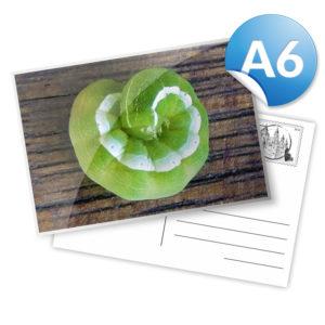 Cartolina_A6